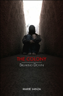 The Colony: Breaking Down (book 3)